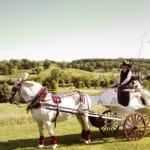 bride in horsedrawn carriage