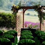 archway at outdoor wedding